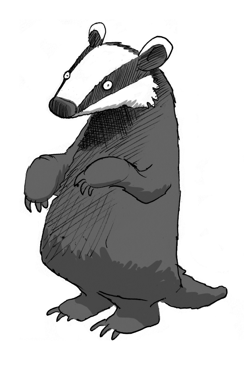 Uncategorized Badger Drawing the badger bespoke a badger